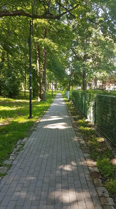 Modernizacja chodnika łącznika ul. Emilii Plater i Filtrowej wraz z oświetleniem